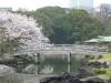 Hamarikyu Gardens, Tokyo