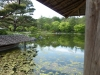 Showa Kinen Park, Tachikawa (Tokyo)
