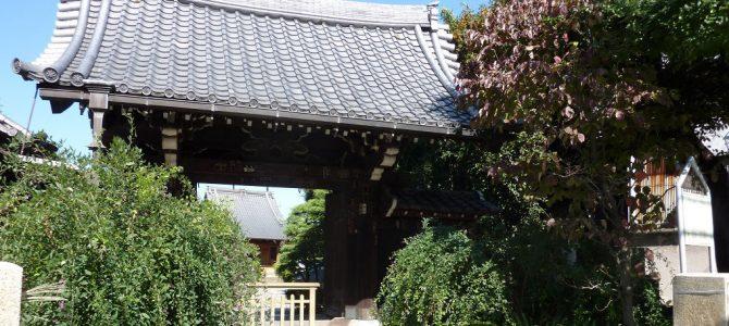 Nippori – the Area Where I Live