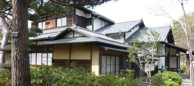 Sightseeing: Museums, Asakusa and Odaiba